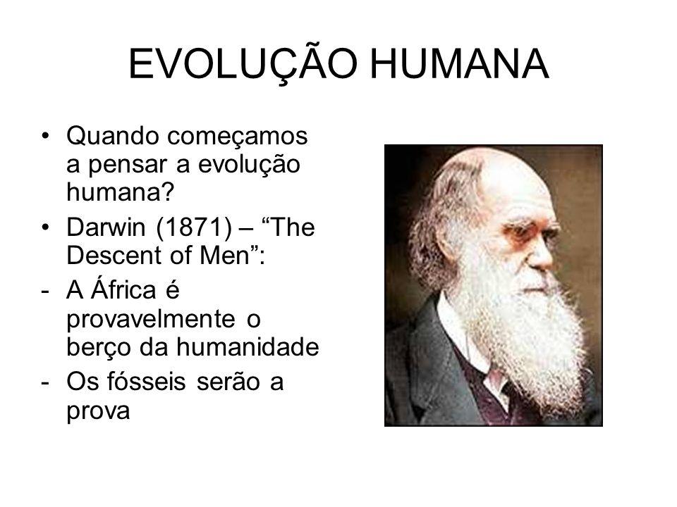 EVOLUÇÃO HUMANA Quando começamos a pensar a evolução humana? Darwin (1871) – The Descent of Men: -A África é provavelmente o berço da humanidade -Os f