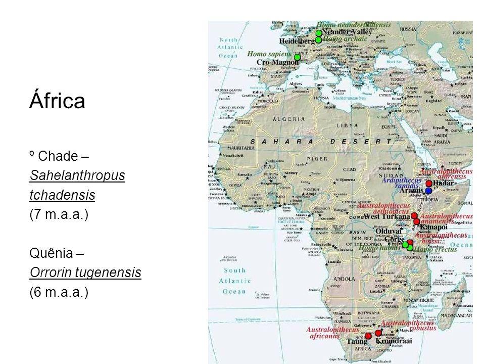 África º Chade – Sahelanthropus tchadensis (7 m.a.a.) Quênia – Orrorin tugenensis (6 m.a.a.)