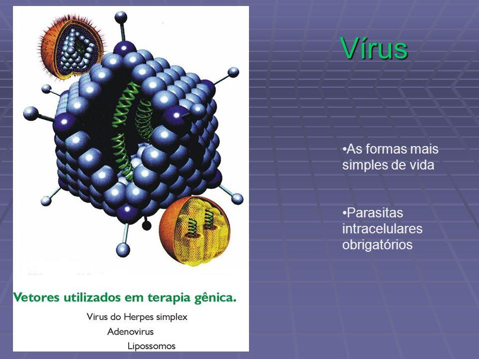 Vírus As formas mais simples de vida Parasitas intracelulares obrigatórios