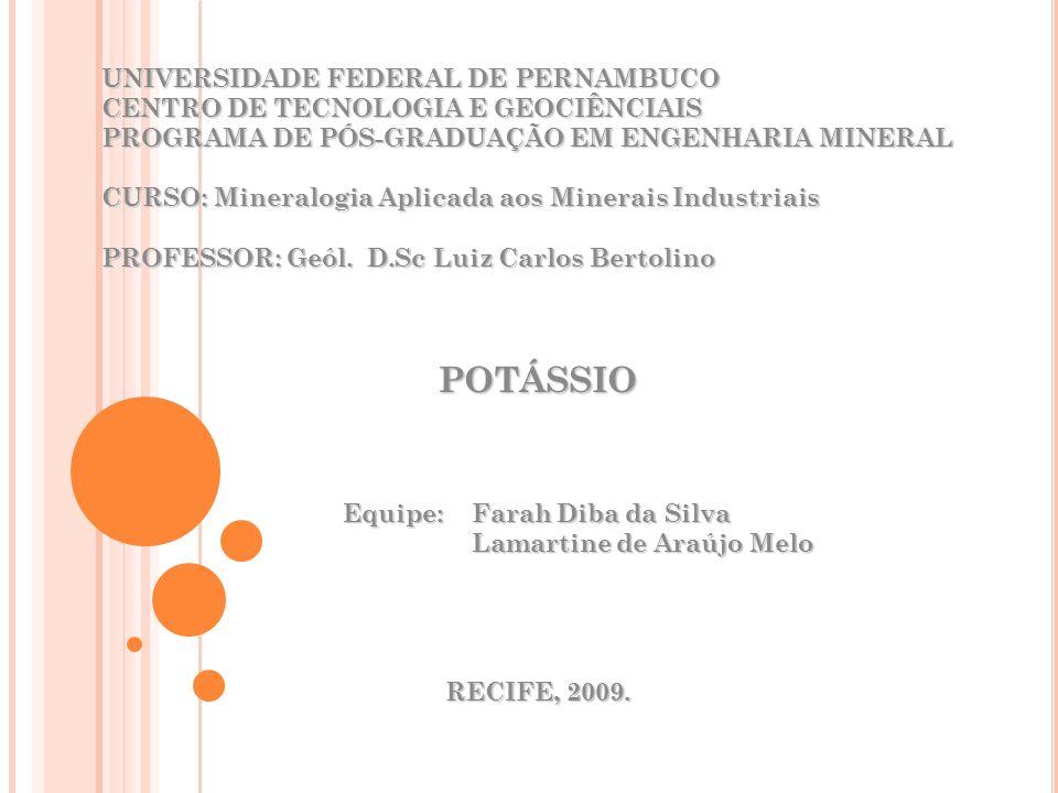 UNIVERSIDADE FEDERAL DE PERNAMBUCO CENTRO DE TECNOLOGIA E GEOCIÊNCIAIS PROGRAMA DE PÓS-GRADUAÇÃO EM ENGENHARIA MINERAL CURSO: Mineralogia Aplicada aos