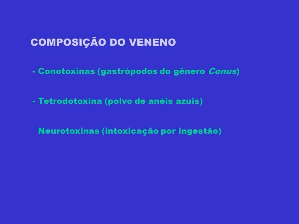Classe Gastropoda Família Coniidae Gênero Conus