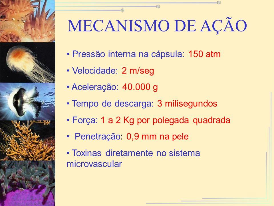 MECANISMO DE AÇÃO Pressão interna na cápsula: 150 atm Velocidade: 2 m/seg Aceleração: 40.000 g Tempo de descarga: 3 milisegundos Força: 1 a 2 Kg por p