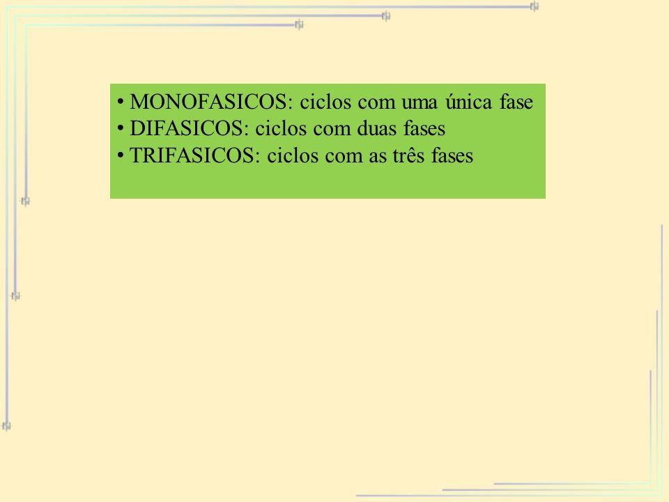 MONOFASICOS: ciclos com uma única fase DIFASICOS: ciclos com duas fases TRIFASICOS: ciclos com as três fases