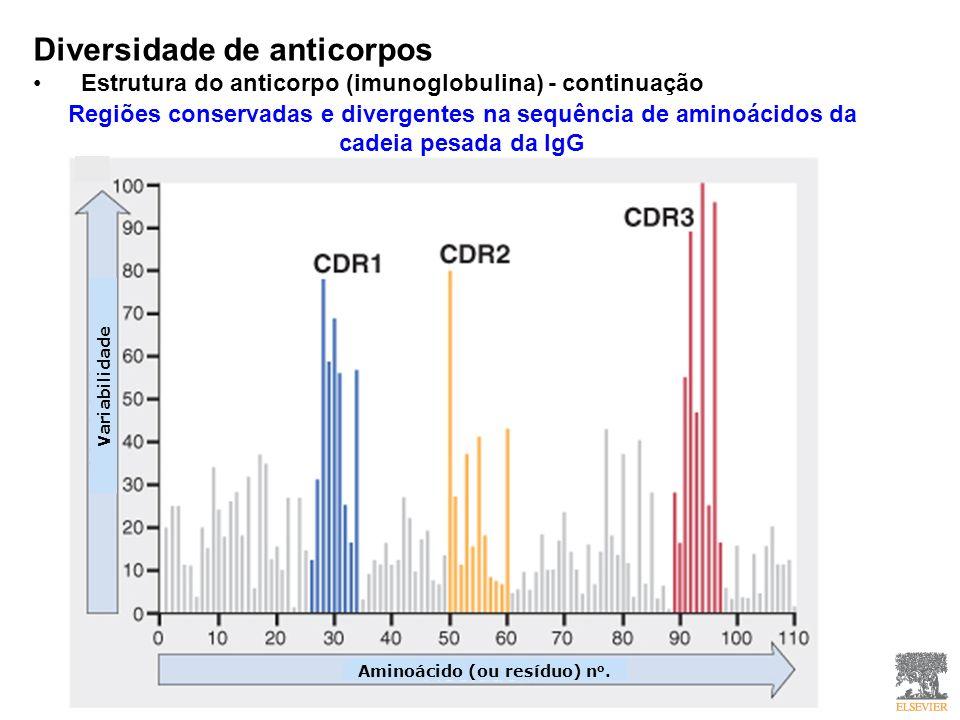 Diversidade de anticorpos Estrutura do anticorpo (imunoglobulina) - continuação Regiões conservadas e divergentes na sequência de aminoácidos da cadei