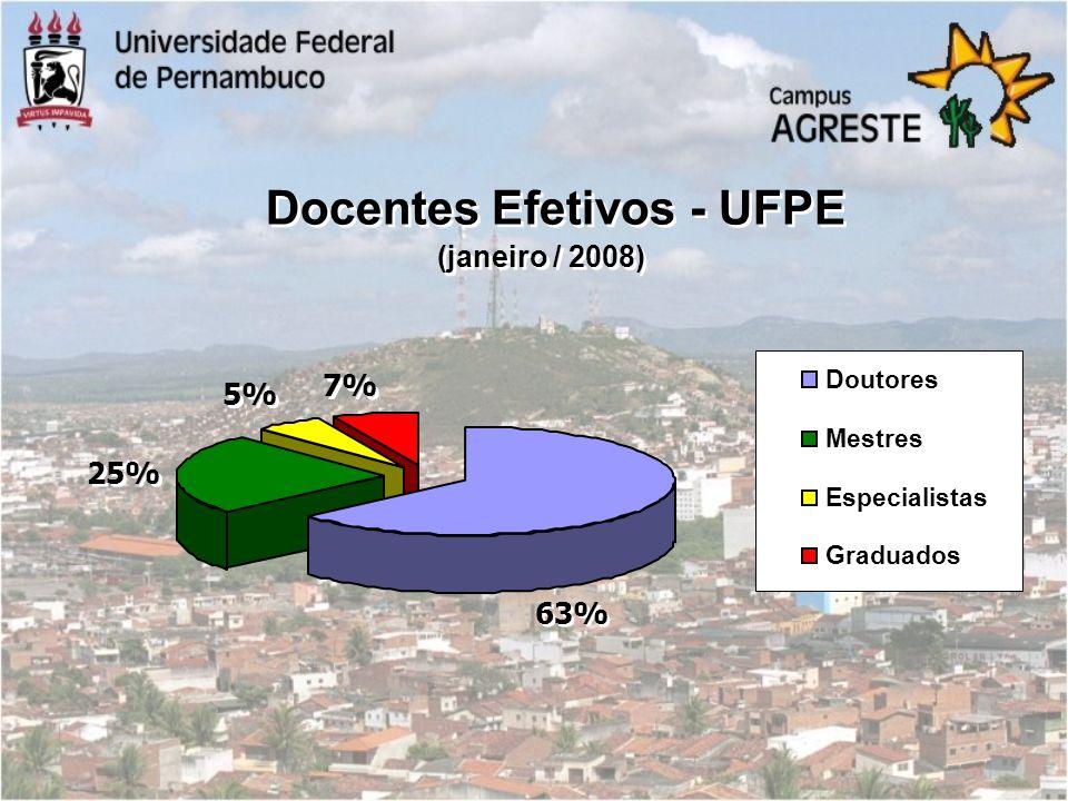 Docentes Efetivos - UFPE (janeiro / 2008) 25% 5% 7% 63% Doutores Mestres Especialistas Graduados
