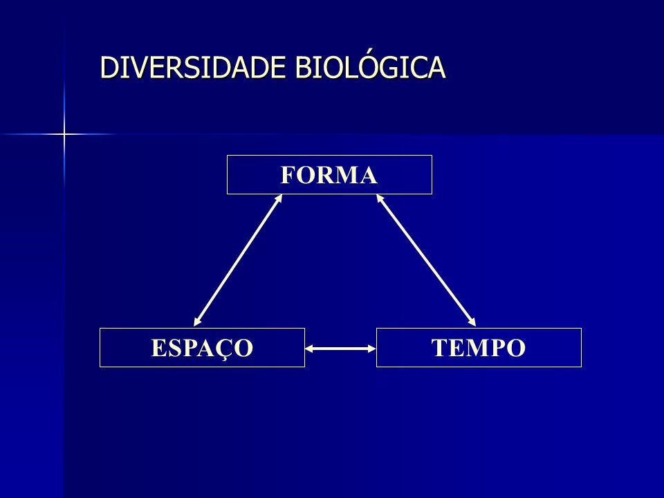 DIVERSIDADE BIOLÓGICA FORMA ESPAÇOTEMPO