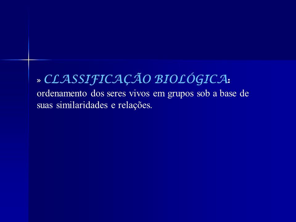 » CLASSIFICAÇÃO BIOLÓGICA : ordenamento dos seres vivos em grupos sob a base de suas similaridades e relações.