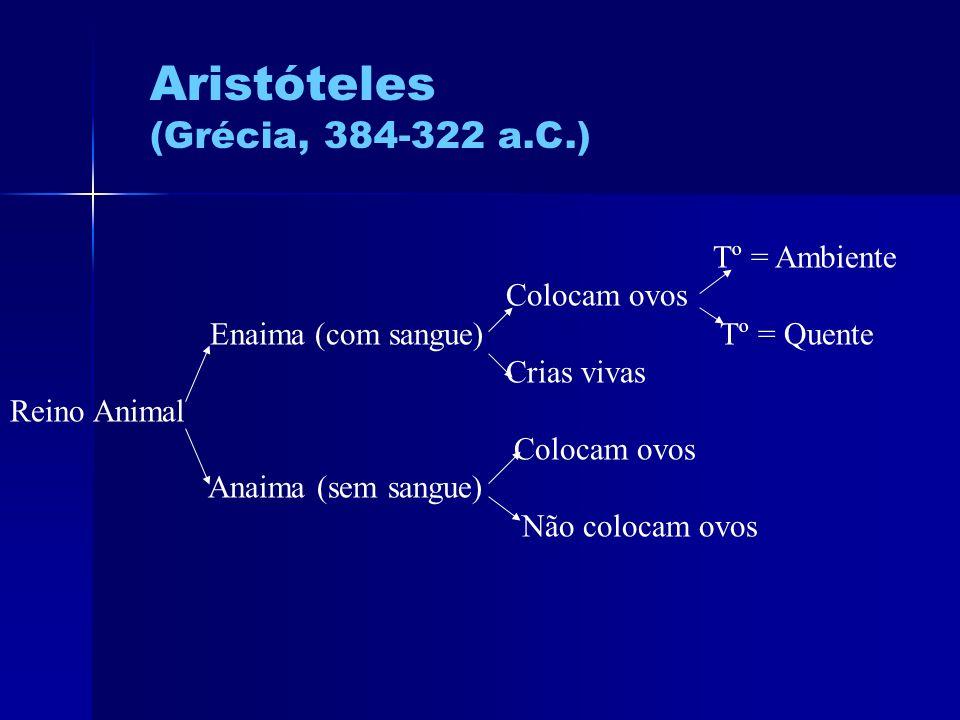 Aristóteles (Grécia, 384-322 a.C.) Tº = Ambiente Colocam ovos Enaima (com sangue) Tº = Quente Crias vivas Reino Animal Colocam ovos Anaima (sem sangue