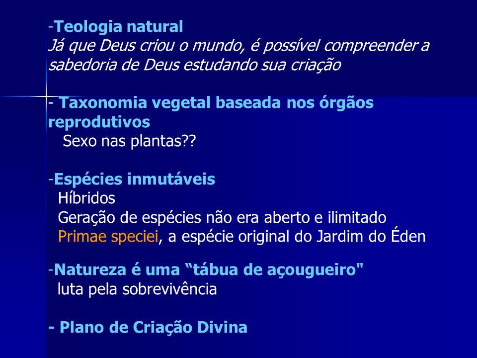 -Teologia natural Já que Deus criou o mundo, é possível compreender a sabedoria de Deus estudando sua criação - Taxonomia vegetal baseada nos órgãos r
