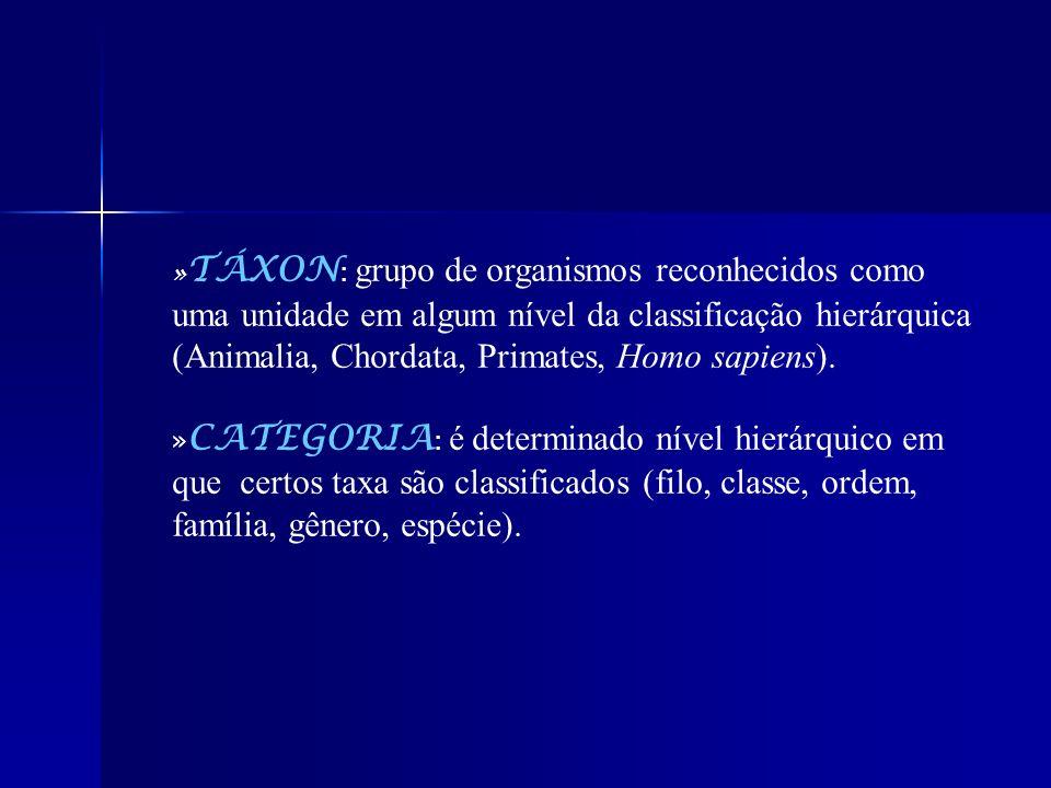 » TÁXON : grupo de organismos reconhecidos como uma unidade em algum nível da classificação hierárquica (Animalia, Chordata, Primates, Homo sapiens).
