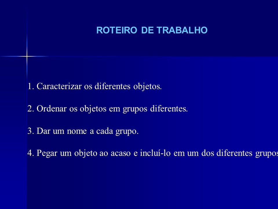 ROTEIRO DE TRABALHO 1. Caracterizar os diferentes objetos. 2. Ordenar os objetos em grupos diferentes. 3. Dar um nome a cada grupo. 4. Pegar um objeto