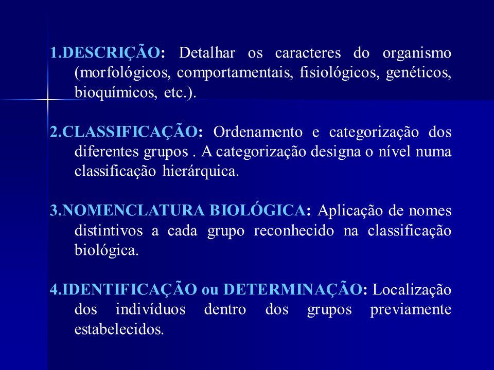1.DESCRIÇÃO: Detalhar os caracteres do organismo (morfológicos, comportamentais, fisiológicos, genéticos, bioquímicos, etc.). 2.CLASSIFICAÇÃO: Ordenam
