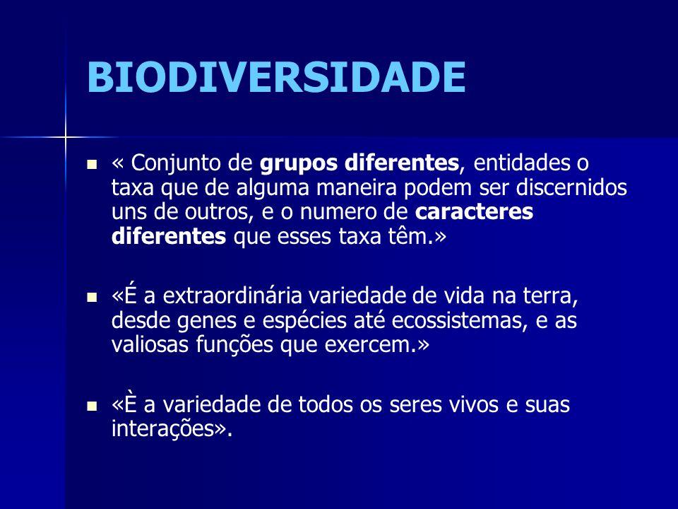BIODIVERSIDADE « Conjunto de grupos diferentes, entidades o taxa que de alguma maneira podem ser discernidos uns de outros, e o numero de caracteres d