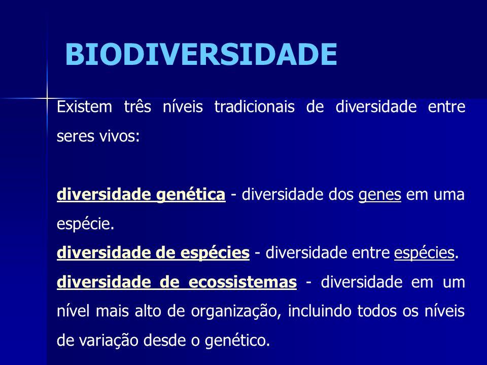 Existem três níveis tradicionais de diversidade entre seres vivos: diversidade genéticadiversidade genética - diversidade dos genes em uma espécie.gen