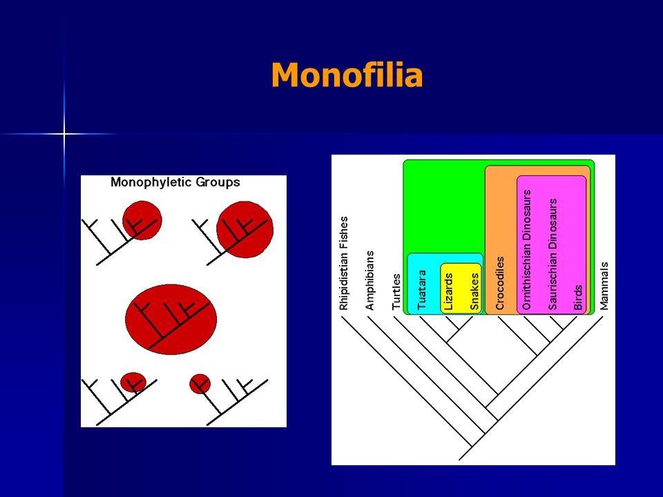 Monofilia