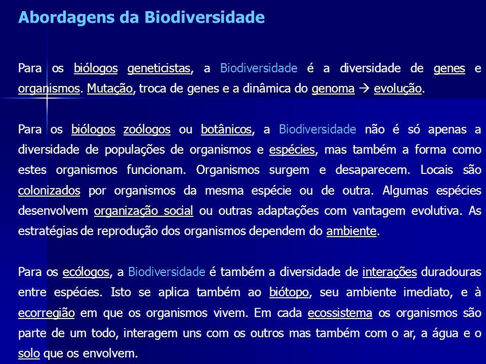Abordagens da Biodiversidade Para os biólogos geneticistas, a Biodiversidade é a diversidade de genes e organismos. Mutação, troca de genes e a dinâmi