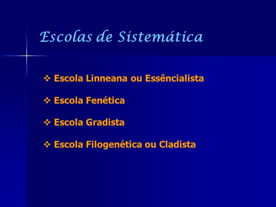 Escolas de Sistemática Escola Linneana ou Essêncialista Escola Fenética Escola Gradista Escola Filogenética ou Cladista
