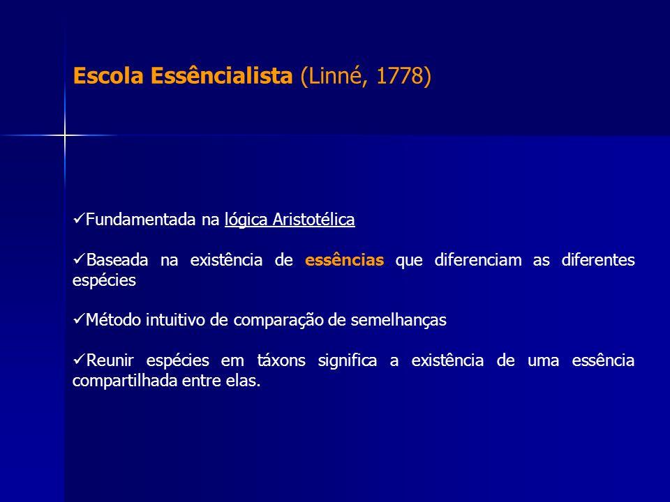 Escola Essêncialista (Linné, 1778) Fundamentada na lógica Aristotélica Baseada na existência de essências que diferenciam as diferentes espécies Métod