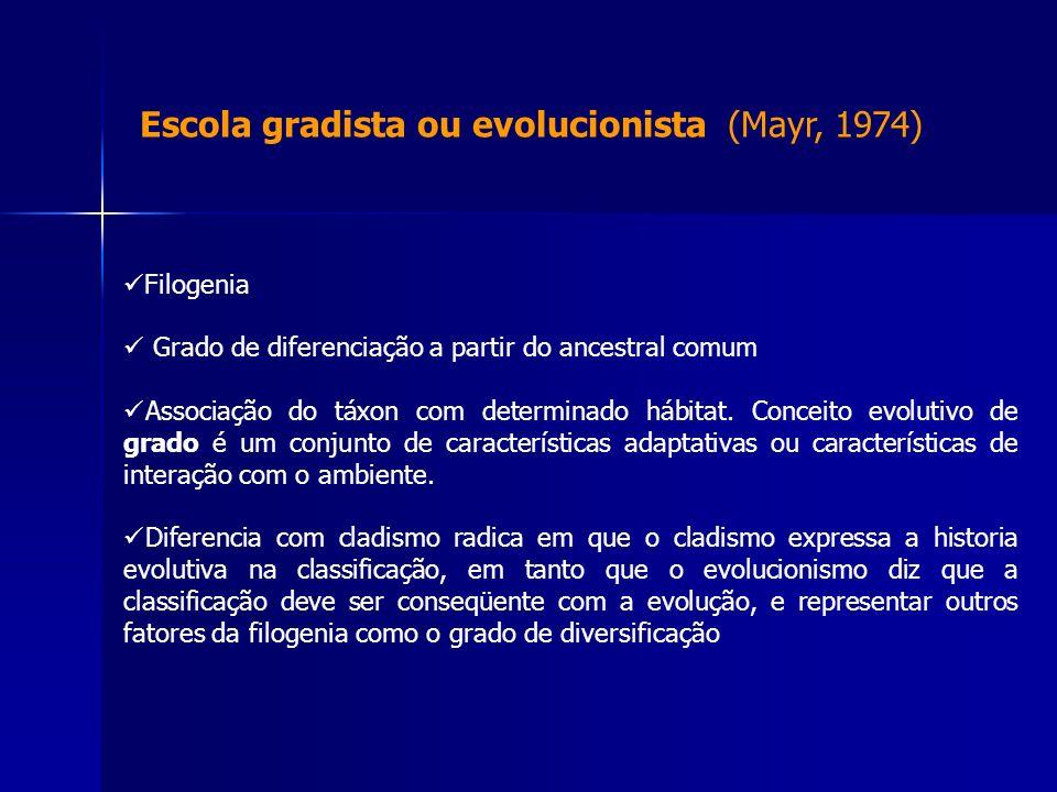Escola gradista ou evolucionista (Mayr, 1974) Filogenia Grado de diferenciação a partir do ancestral comum Associação do táxon com determinado hábitat