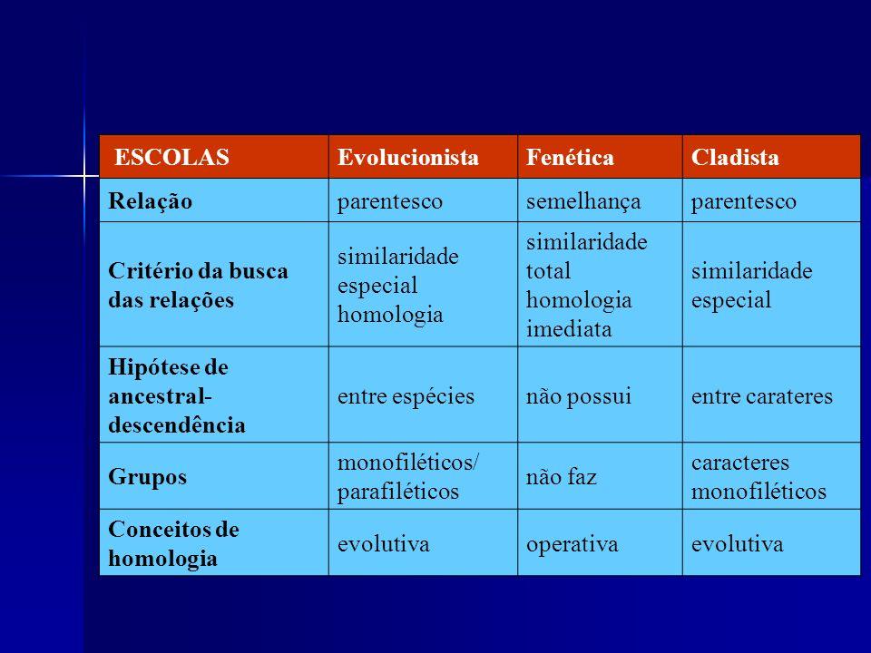 ESCOLASEvolucionistaFenéticaCladista Relaçãoparentescosemelhançaparentesco Critério da busca das relações similaridade especial homologia similaridade