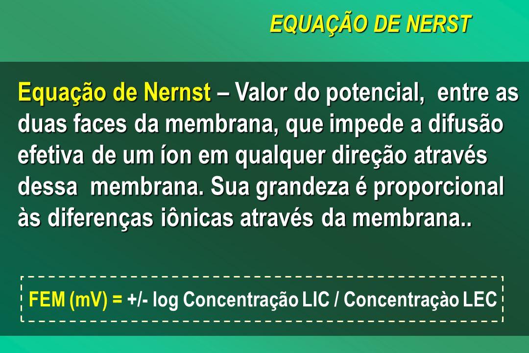 EQUAÇÃO DE NERST Equação de Nernst – Valor do potencial, entre as duas faces da membrana, que impede a difusão efetiva de um íon em qualquer direção através dessa membrana.