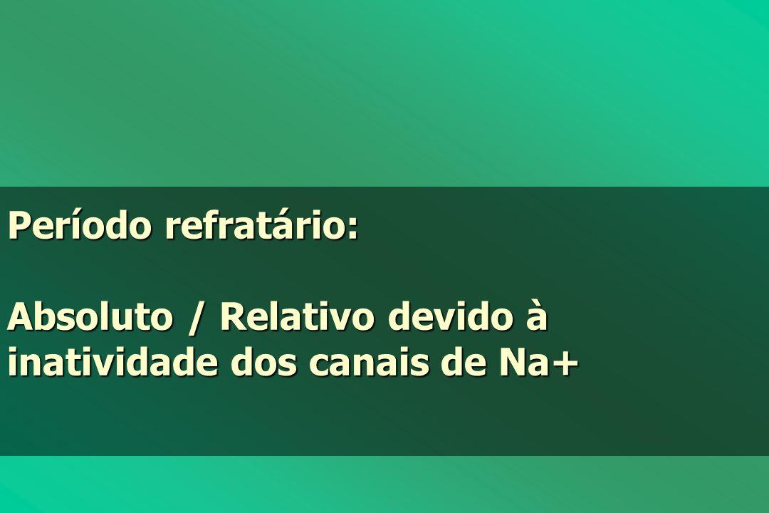 Período refratário: Absoluto / Relativo devido à inatividade dos canais de Na+