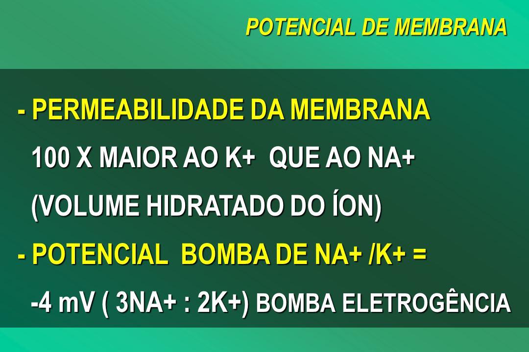POTENCIAL DE MEMBRANA - PERMEABILIDADE DA MEMBRANA 100 X MAIOR AO K+ QUE AO NA+ (VOLUME HIDRATADO DO ÍON) - POTENCIAL BOMBA DE NA+ /K+ = -4 mV ( 3NA+ : 2K+) BOMBA ELETROGÊNCIA
