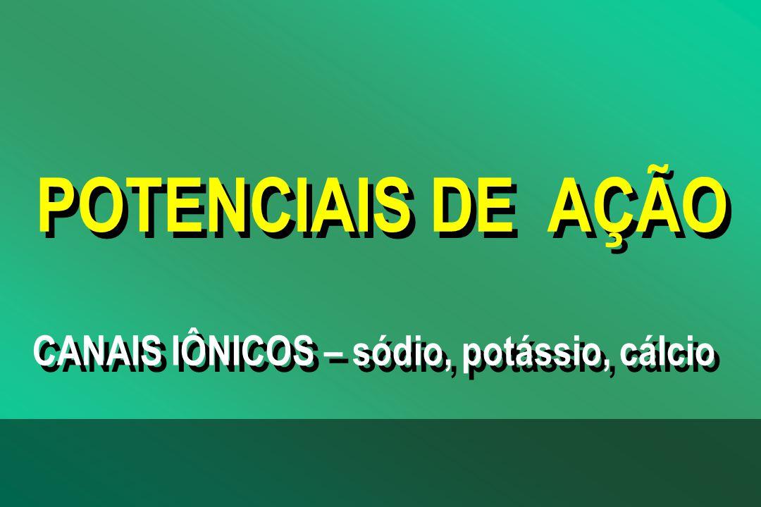POTENCIAIS DE AÇÃO CANAIS IÔNICOS – sódio, potássio, cálcio