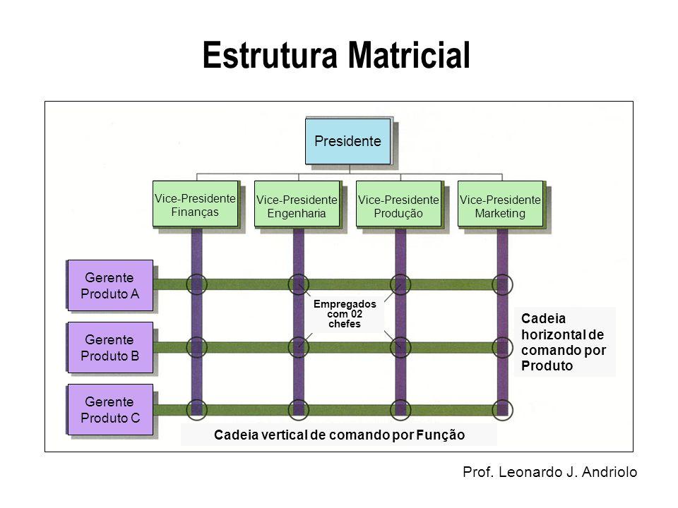 Estrutura Matricial Prof. Leonardo J. Andriolo Vice-Presidente Finanças Vice-Presidente Engenharia Vice-Presidente Produção Vice-Presidente Marketing