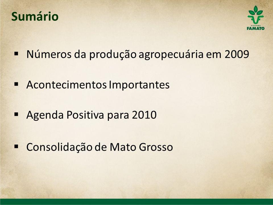 Sumário Números da produção agropecuária em 2009 Acontecimentos Importantes Agenda Positiva para 2010 Consolidação de Mato Grosso