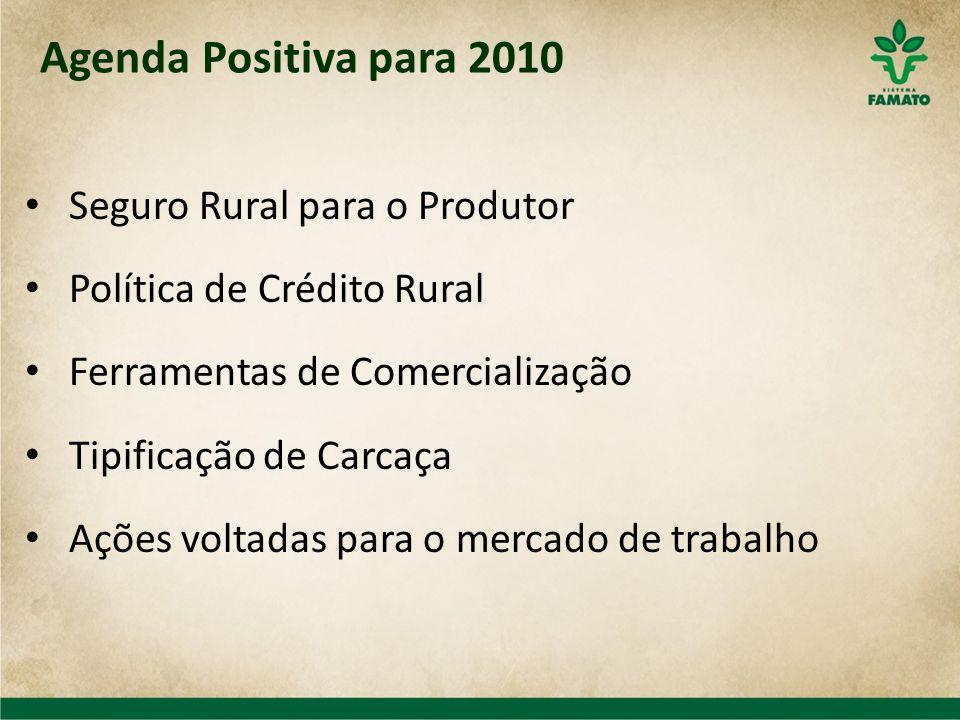 Seguro Rural para o Produtor Política de Crédito Rural Ferramentas de Comercialização Tipificação de Carcaça Ações voltadas para o mercado de trabalho