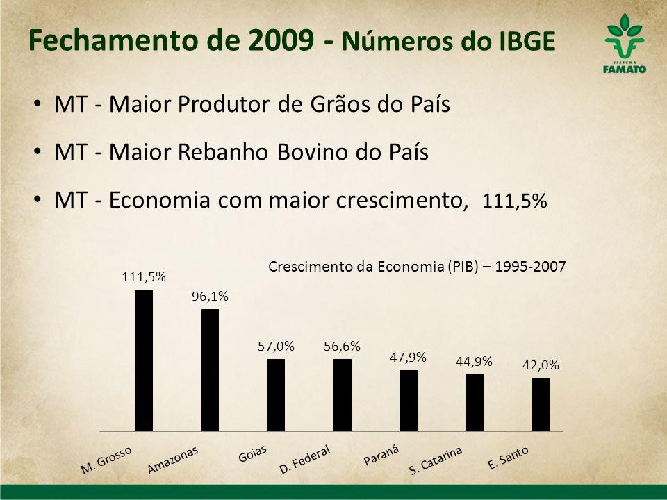 MT - Maior Produtor de Grãos do País MT - Maior Rebanho Bovino do País MT - Economia com maior crescimento, 111,5% Fechamento de 2009 - Números do IBG
