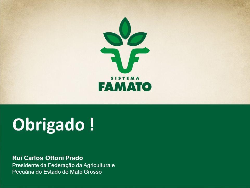 Obrigado ! Rui Carlos Ottoni Prado Presidente da Federação da Agricultura e Pecuária do Estado de Mato Grosso