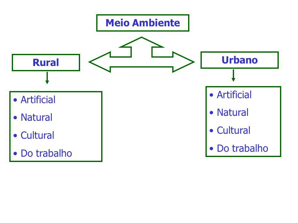 Meio Ambiente Urbano Rural Artificial Natural Cultural Do trabalho Artificial Natural Cultural Do trabalho