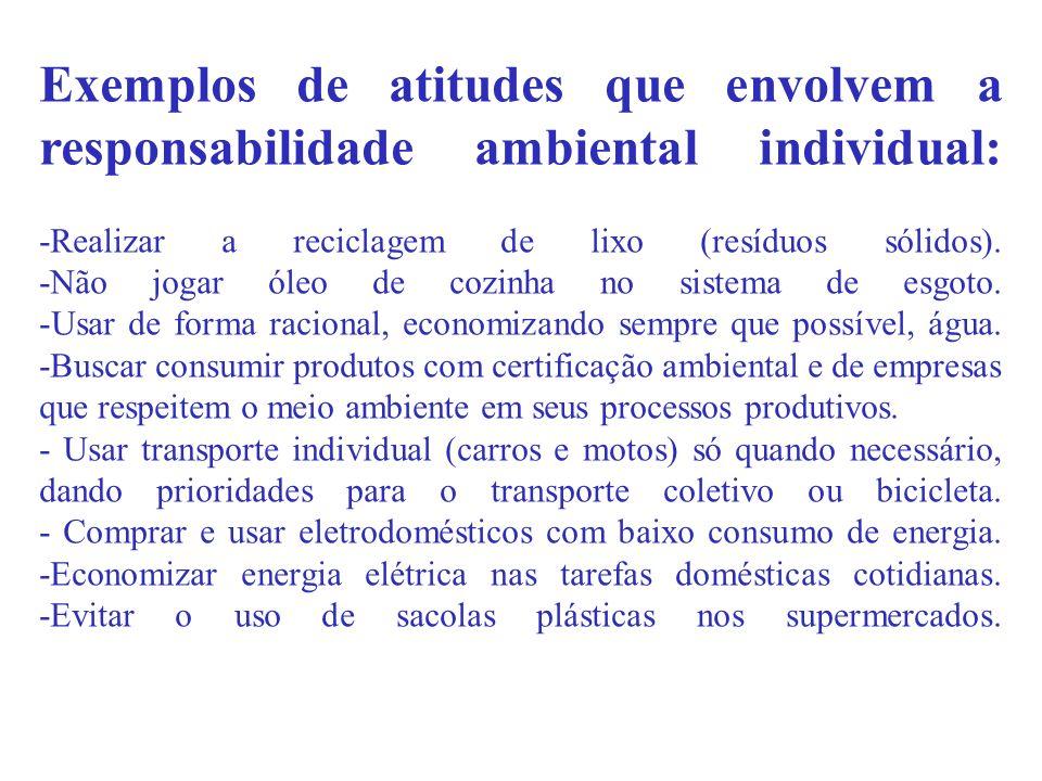 Exemplos de atitudes que envolvem a responsabilidade ambiental individual: -Realizar a reciclagem de lixo (resíduos sólidos). -Não jogar óleo de cozin