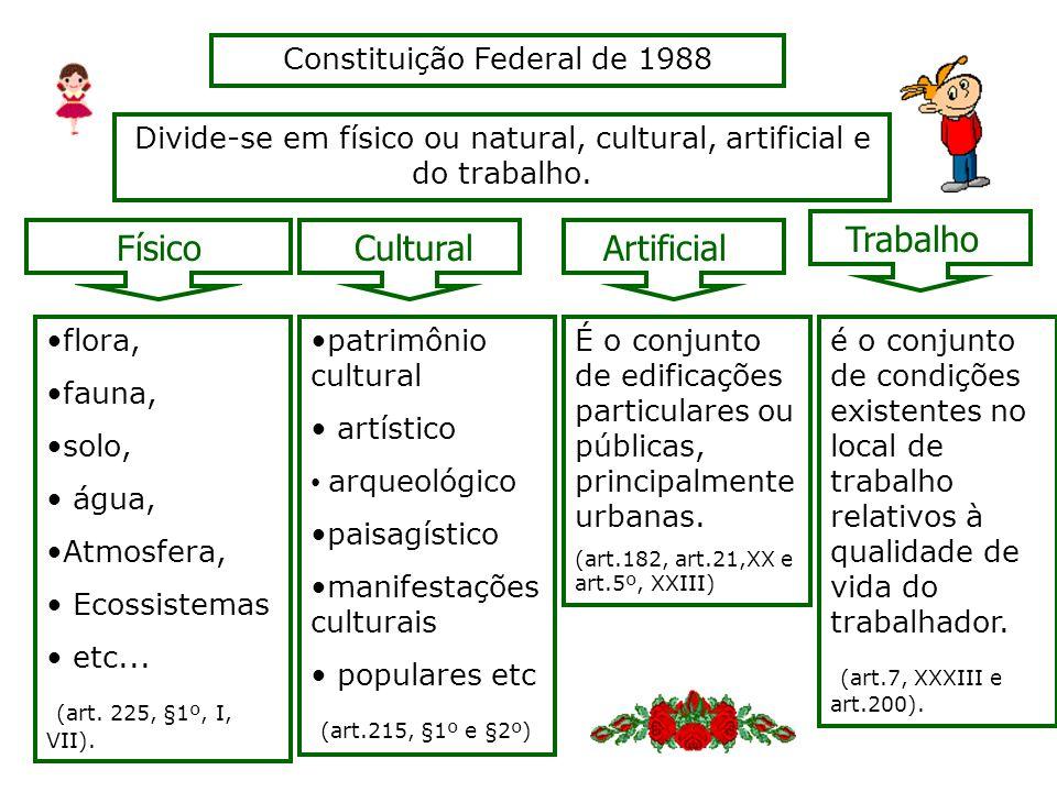 Divide-se em físico ou natural, cultural, artificial e do trabalho. Constituição Federal de 1988 CulturalArtificial Trabalho Físico flora, fauna, solo