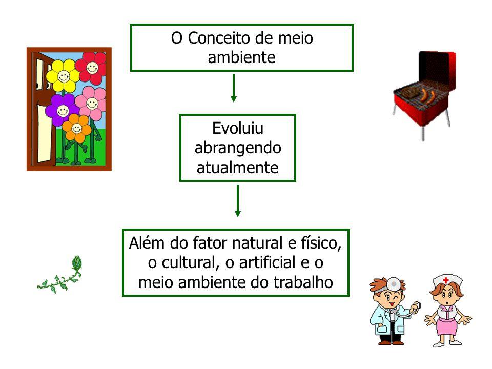 O Conceito de meio ambiente Evoluiu abrangendo atualmente Além do fator natural e físico, o cultural, o artificial e o meio ambiente do trabalho