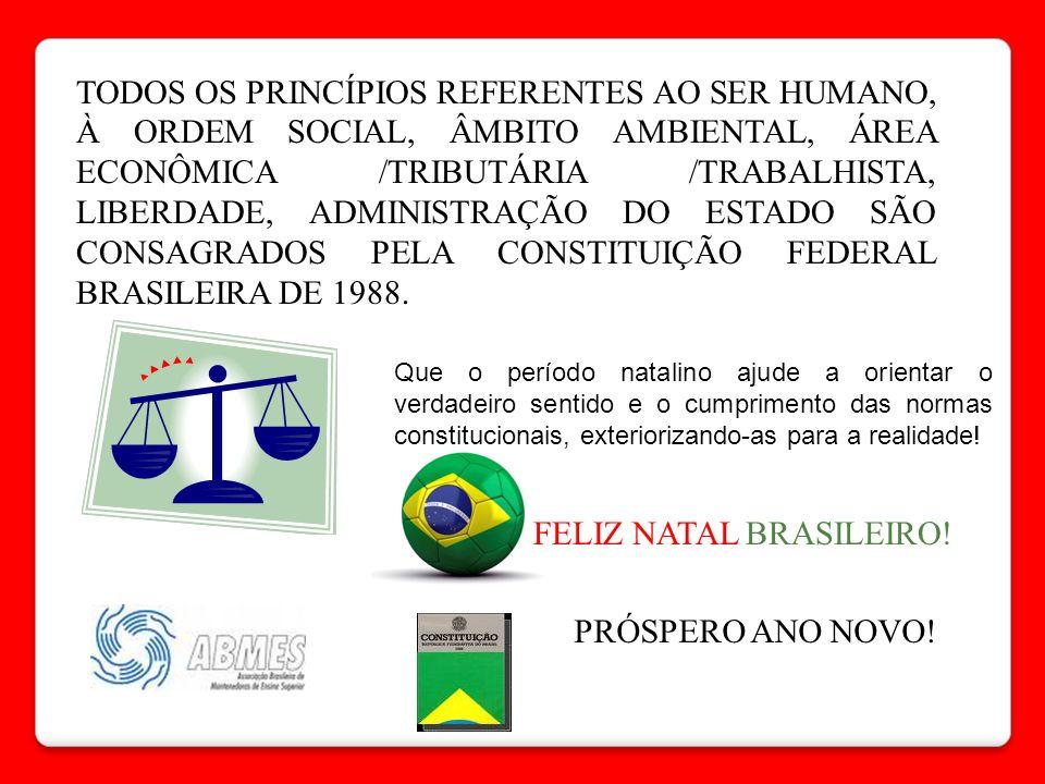 TODOS OS PRINCÍPIOS REFERENTES AO SER HUMANO, À ORDEM SOCIAL, ÂMBITO AMBIENTAL, ÁREA ECONÔMICA /TRIBUTÁRIA /TRABALHISTA, LIBERDADE, ADMINISTRAÇÃO DO E