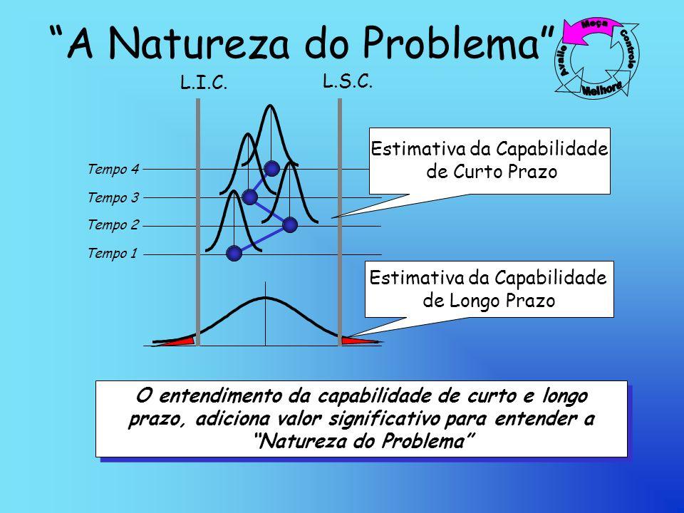 A Natureza do Problema Tempo 1 Tempo 2 Tempo 3 Tempo 4 L.I.C.