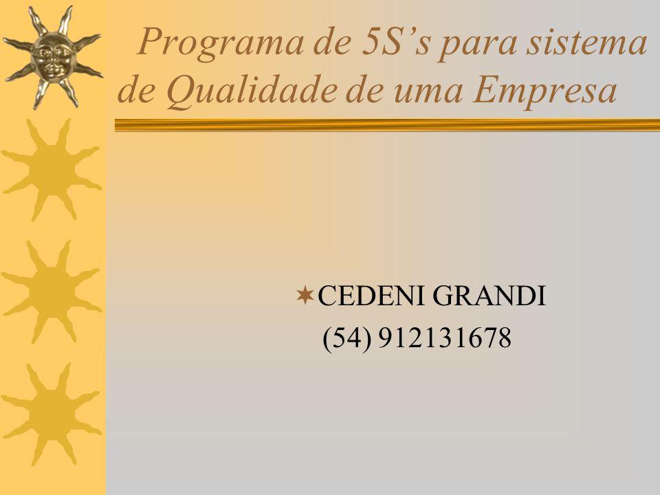 Programa de 5Ss para sistema de Qualidade de uma Empresa CEDENI GRANDI (54) 912131678