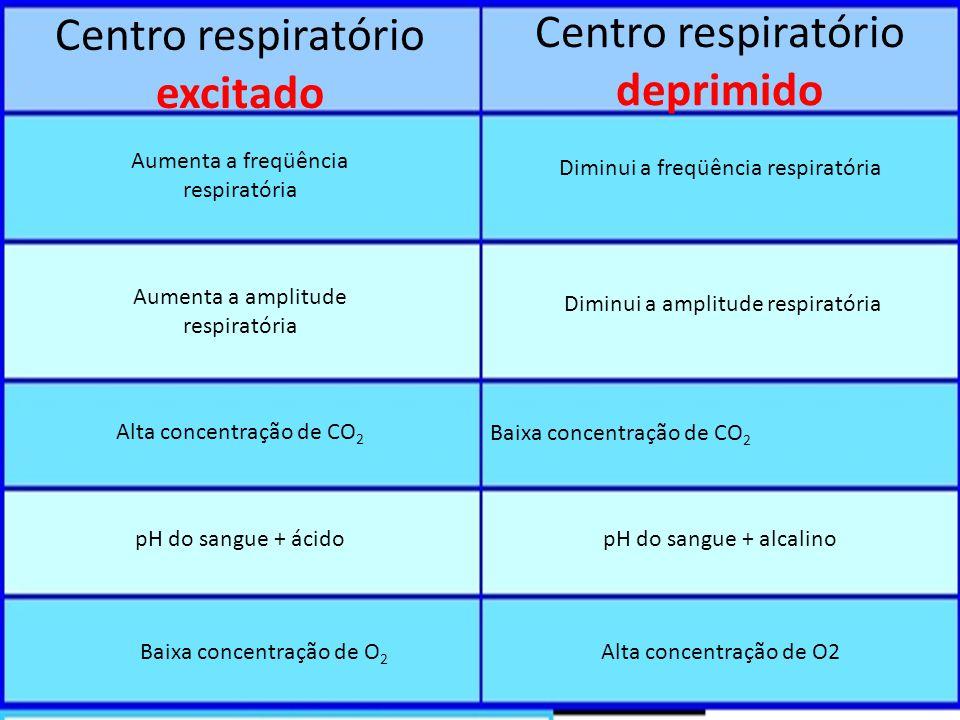 Centro respiratório excitado Centro respiratório deprimido Aumenta a freqüência respiratória Aumenta a amplitude respiratória Alta concentração de CO