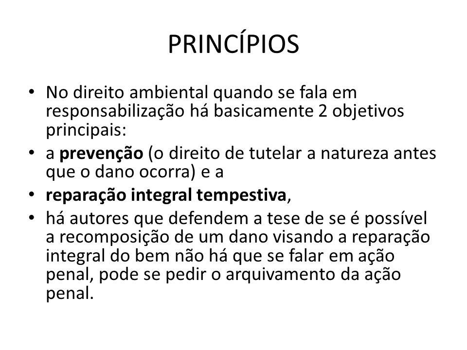 PRINCÍPIOS No direito ambiental quando se fala em responsabilização há basicamente 2 objetivos principais: a prevenção (o direito de tutelar a naturez