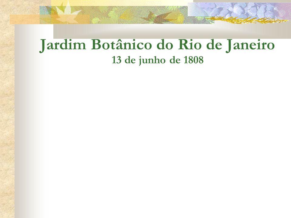 Jardim Botânico do Rio de Janeiro 13 de junho de 1808