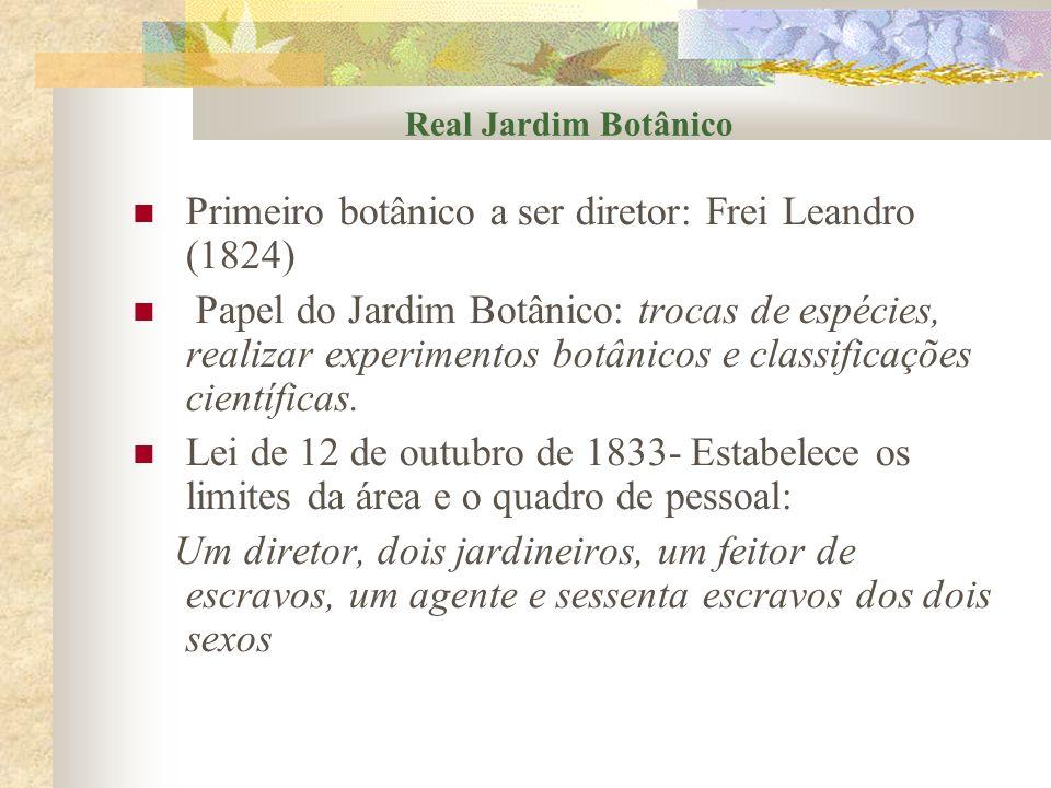 Real Jardim Botânico Primeiro botânico a ser diretor: Frei Leandro (1824) Papel do Jardim Botânico: trocas de espécies, realizar experimentos botânico