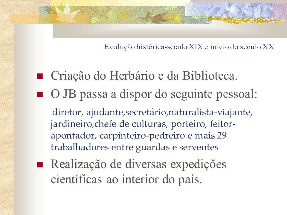 Evolução histórica-século XIX e início do século XX Criação do Herbário e da Biblioteca. O JB passa a dispor do seguinte pessoal: diretor, ajudante,se