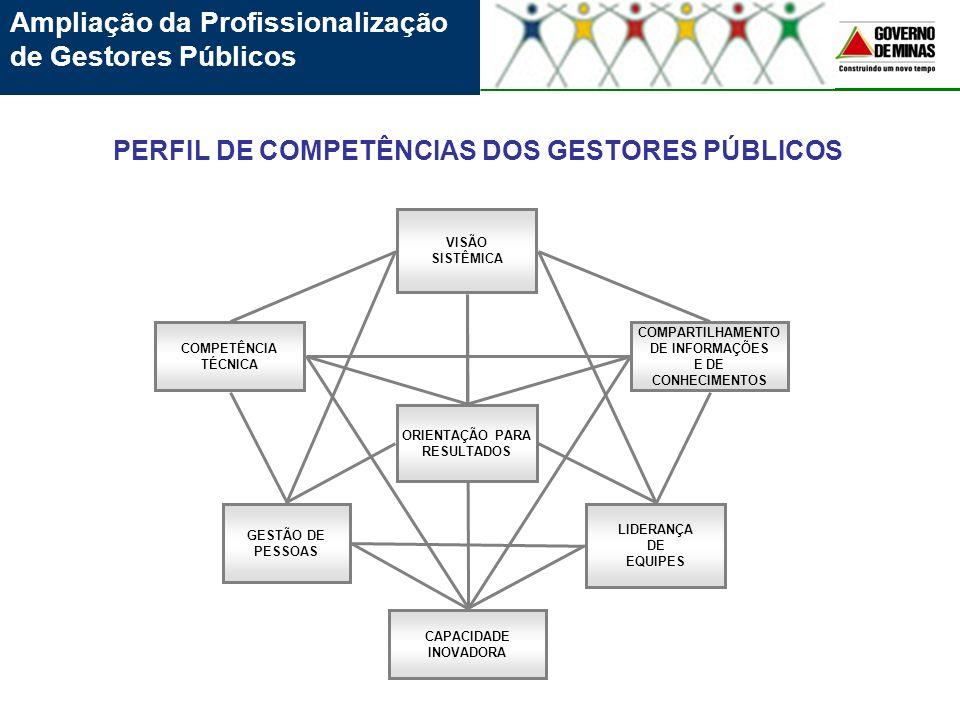 Ampliação da Profissionalização de Gestores Públicos GESTÃO DE PESSOAS LIDERANÇA DE EQUIPES VISÃO SISTÊMICA COMPARTILHAMENTO DE INFORMAÇÕES E DE CONHE
