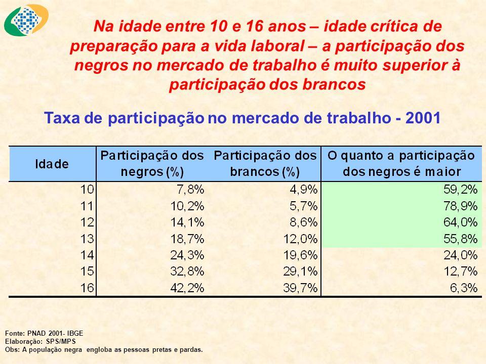 Por sua vez, ao longo da vida, a taxa de desemprego dos negros é maior que a dos brancos Fonte: PNAD 2001- IBGE Elaboração: SPS/MPS Obs: A população negra engloba as pessoas pretas e pardas.