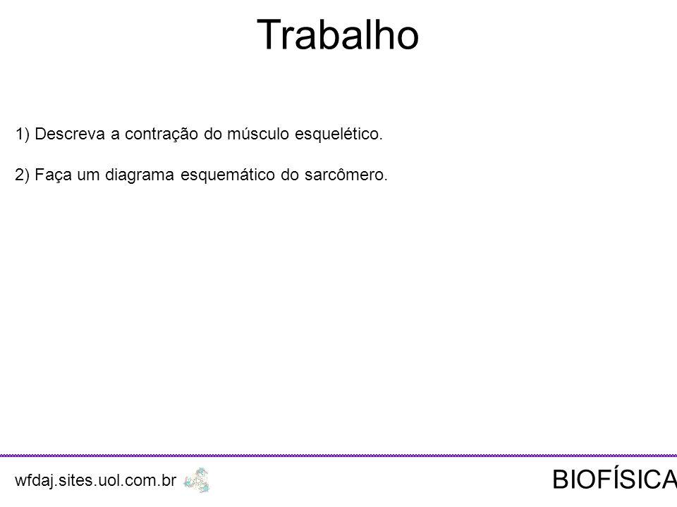 Trabalho 1) Descreva a contração do músculo esquelético.