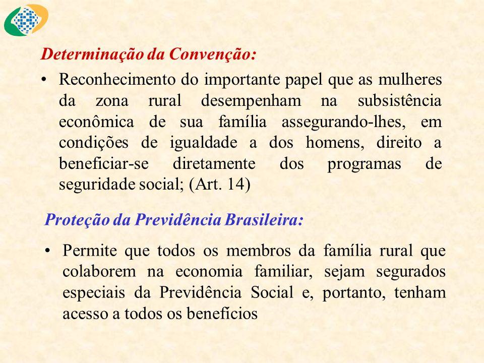 Determinação da Convenção: Reconhecimento do importante papel que as mulheres da zona rural desempenham na subsistência econômica de sua família asseg