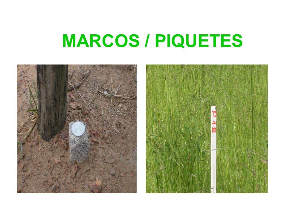 MARCOS / PIQUETES